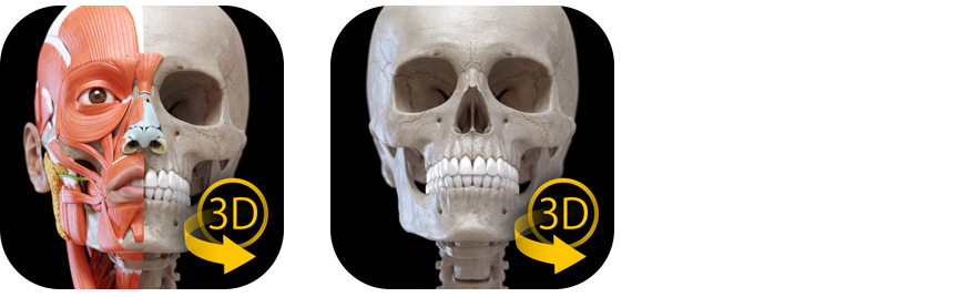 3D Atlas of Anatomy